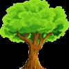 Baum als Zeichen der Natur